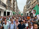 Manifestazione Algeri